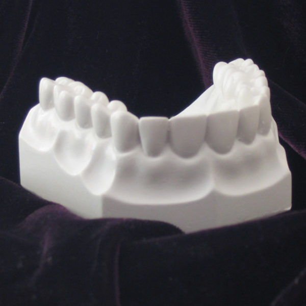 Orthodontic Plaster